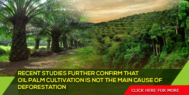 Recent Studies Further Confirm that Oil Palm Cultivation is not the Main Cause of Deforestation