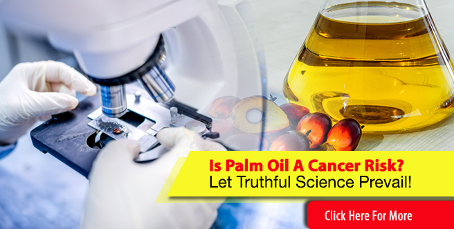 Is Palm Oil A Cancer Risk? Let Truthful Science Prevail!