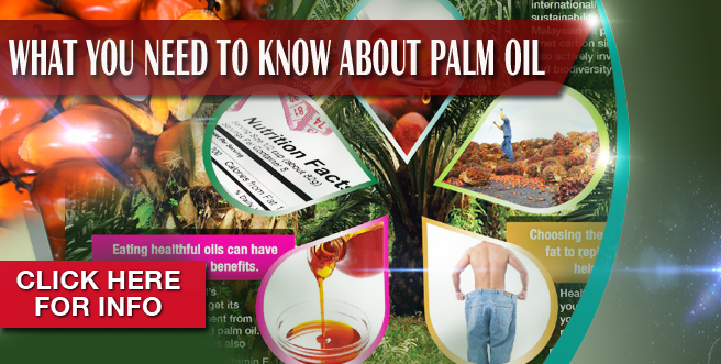 What You Need to Know About Palm Oil