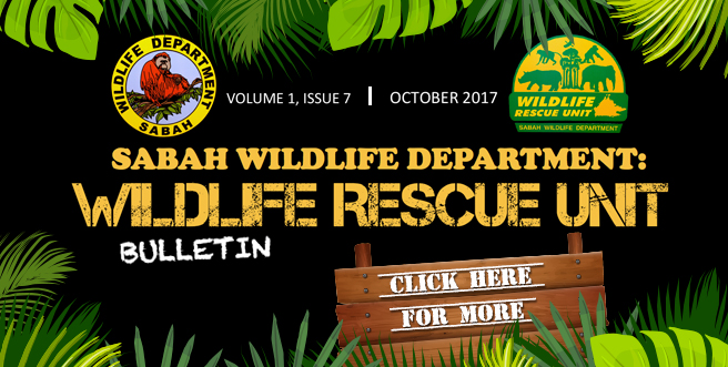 Wildlife Rescue Unit Bulletin – October 2017